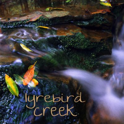 Nature Sound MP3 album cover - Lyrebird Creek