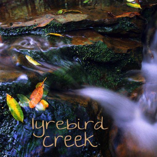 Nature Sound MP3 album cover - Lyrebird Creek