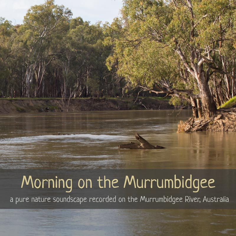 Morning on the Murrumbidgee - Nature Soundscape Album