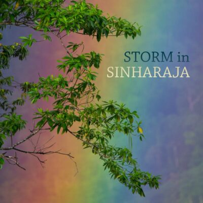 Storm in Sinharaja - Nature Soundscape from Sri Lanka