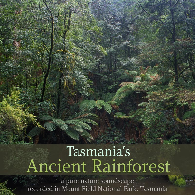 Nature Sounds - Tasmania's Ancient Rainforest' cover