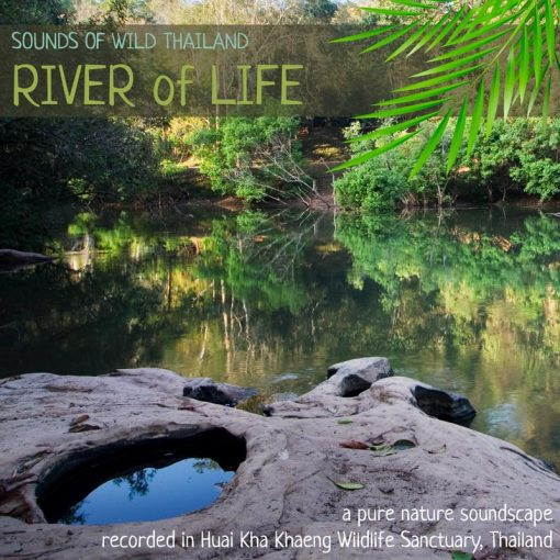 Nature Sounds Album from Thailand - 'River of Life' cover