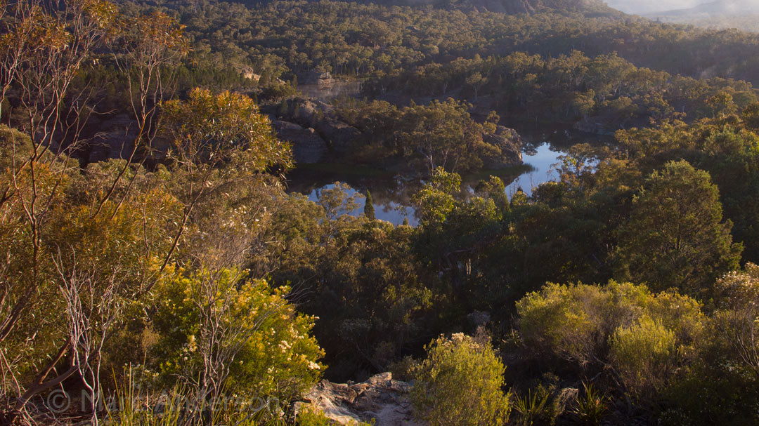 Dawn Soundscape from Wollemi National Park