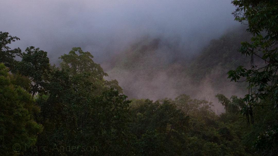 A recording from Kaeng Krachan National Park, Thailand