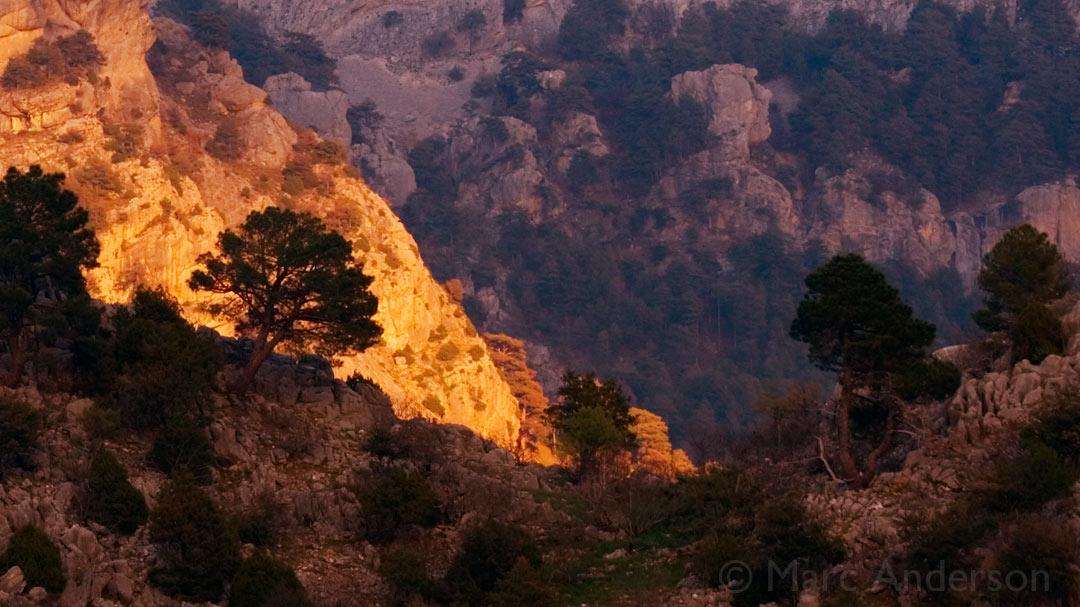 New Album: Andalucian Dawn