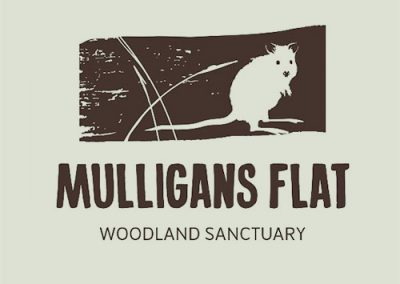 Woodlands & Wetlands Trust – Custom Soundscape