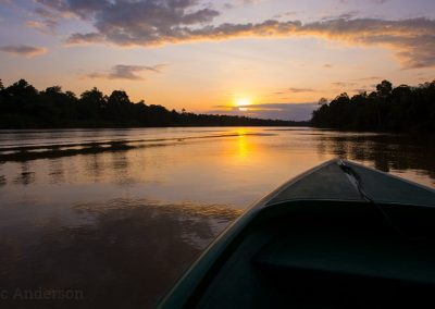 On the Kinabatangan River