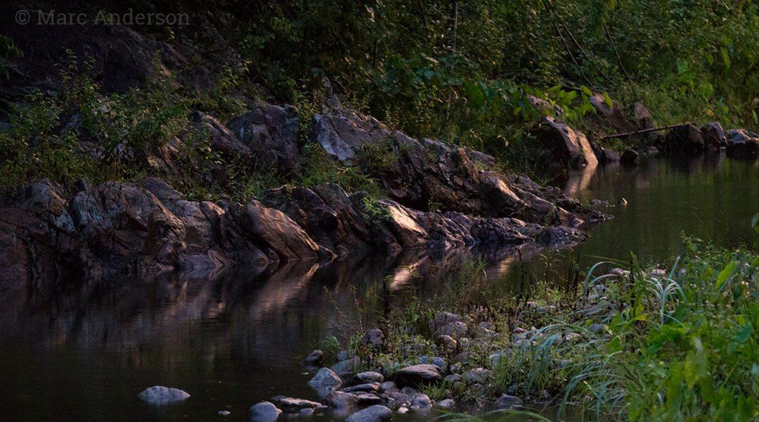 Album Release: Sounds of Wild Thailand II – River of Life