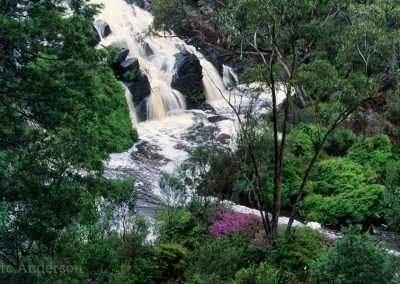 Stream in the Grampians
