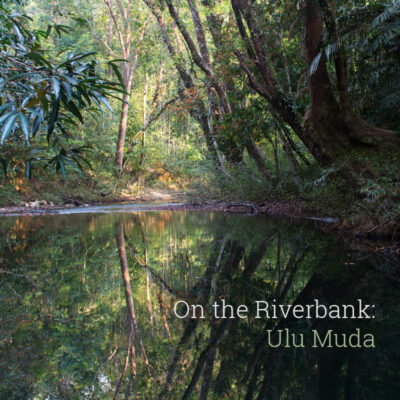 """On the Riverbank: Ulu Muda"" Album Cover"
