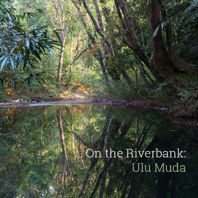 On the Riverbank: Ulu Muda - Album Cover