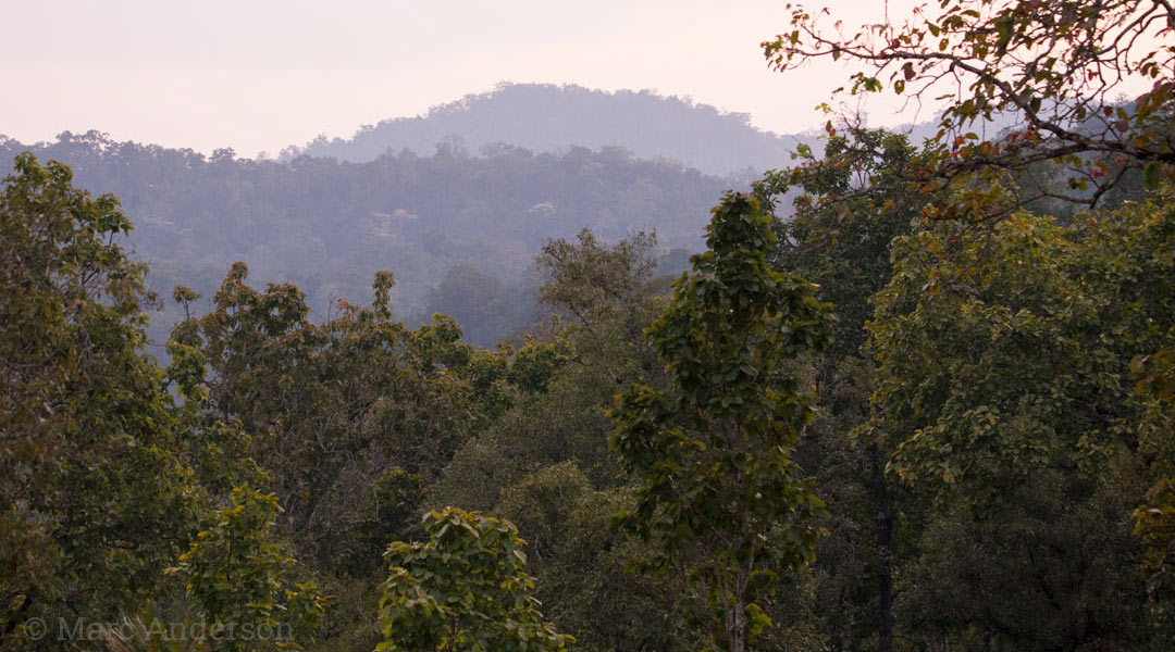 View over Thung Yai, Western Forest Complex