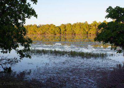 Sweetwater Lake at Sunrise