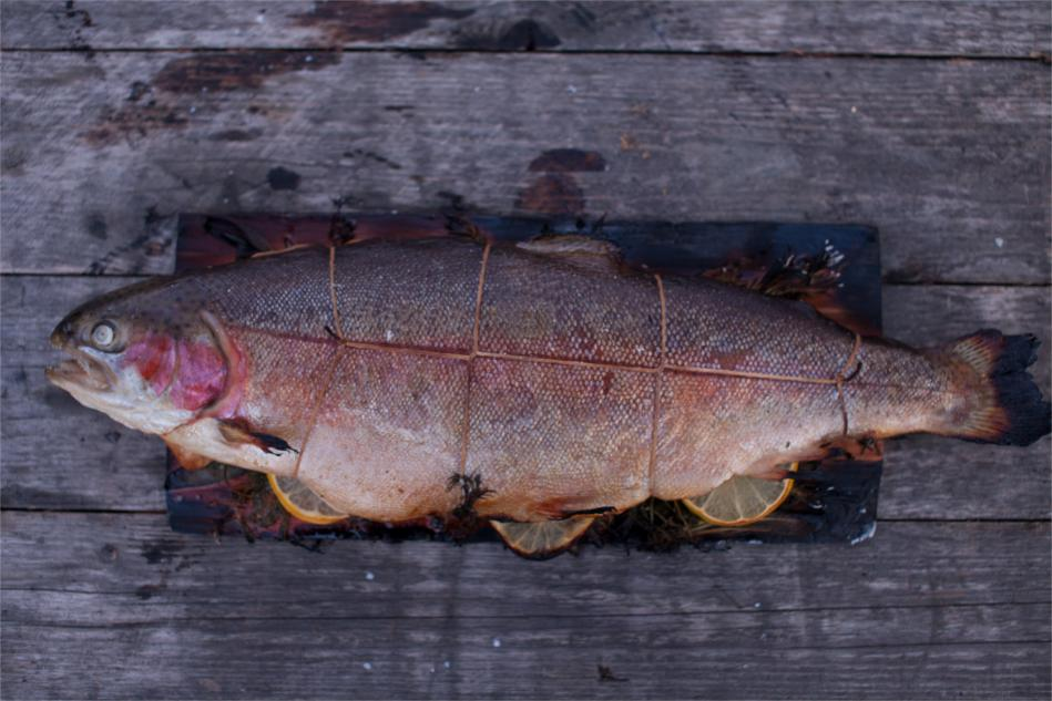 Cedar Planked Whole Stuffed Steelhead Recipe