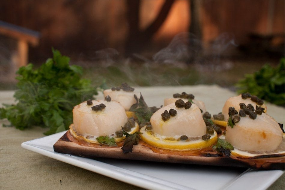 Alder Planked Scallops Piccata Recipe