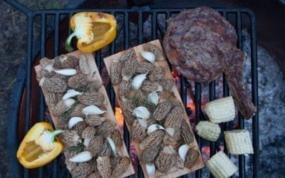 Maple Wood Grilled Tomahawk Steak