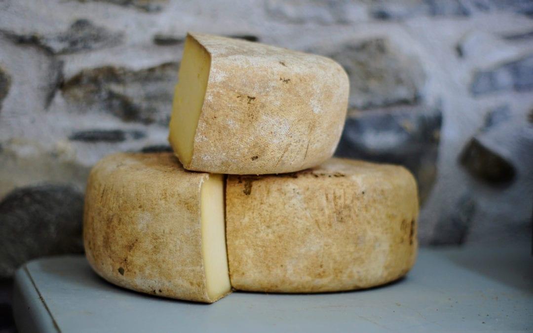 How to Smoke Cheese