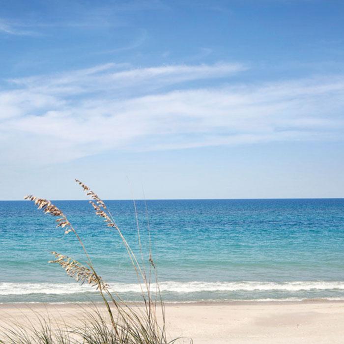 Windsor Florida Beachfront Residences