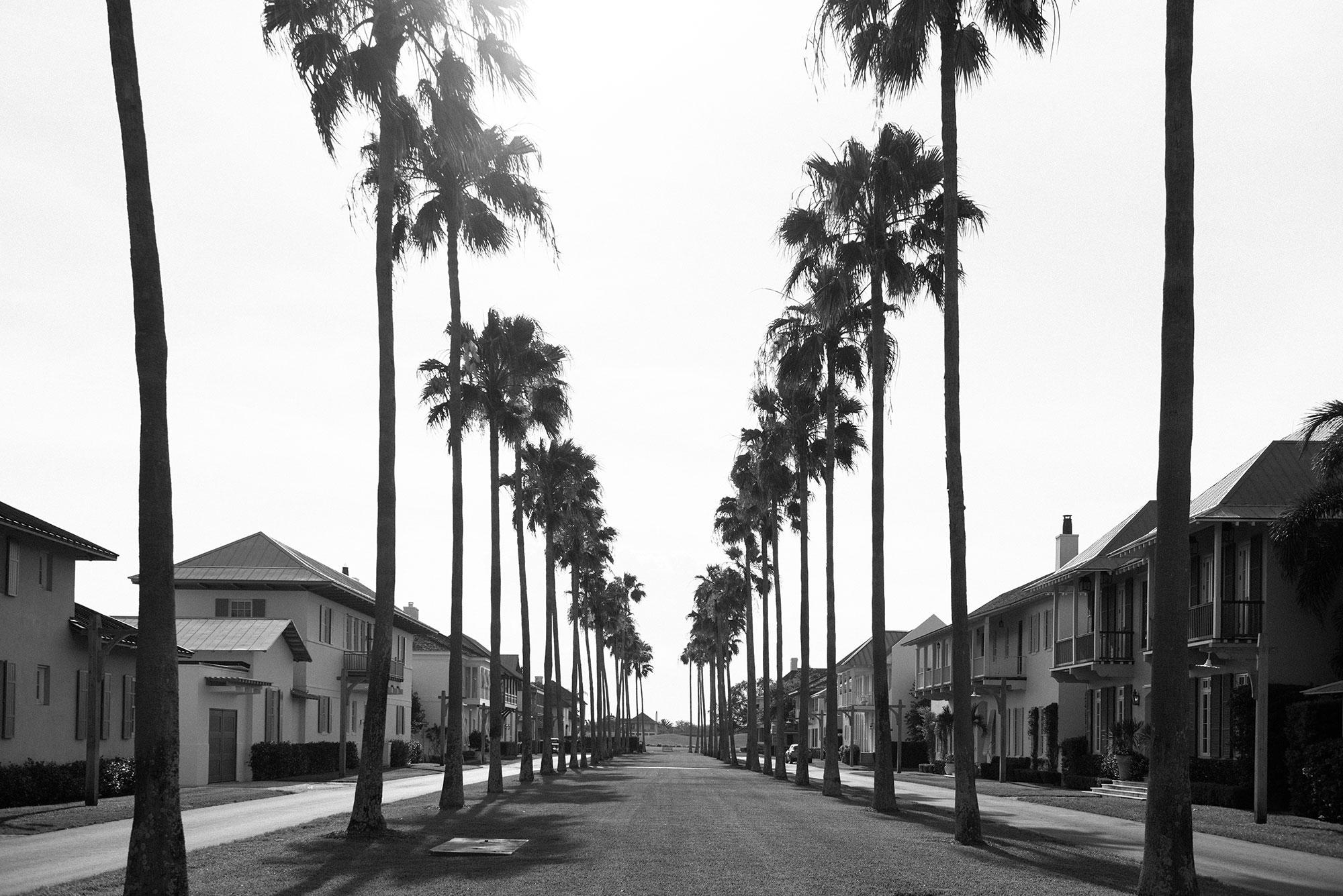 Windsor Florida Main Drive