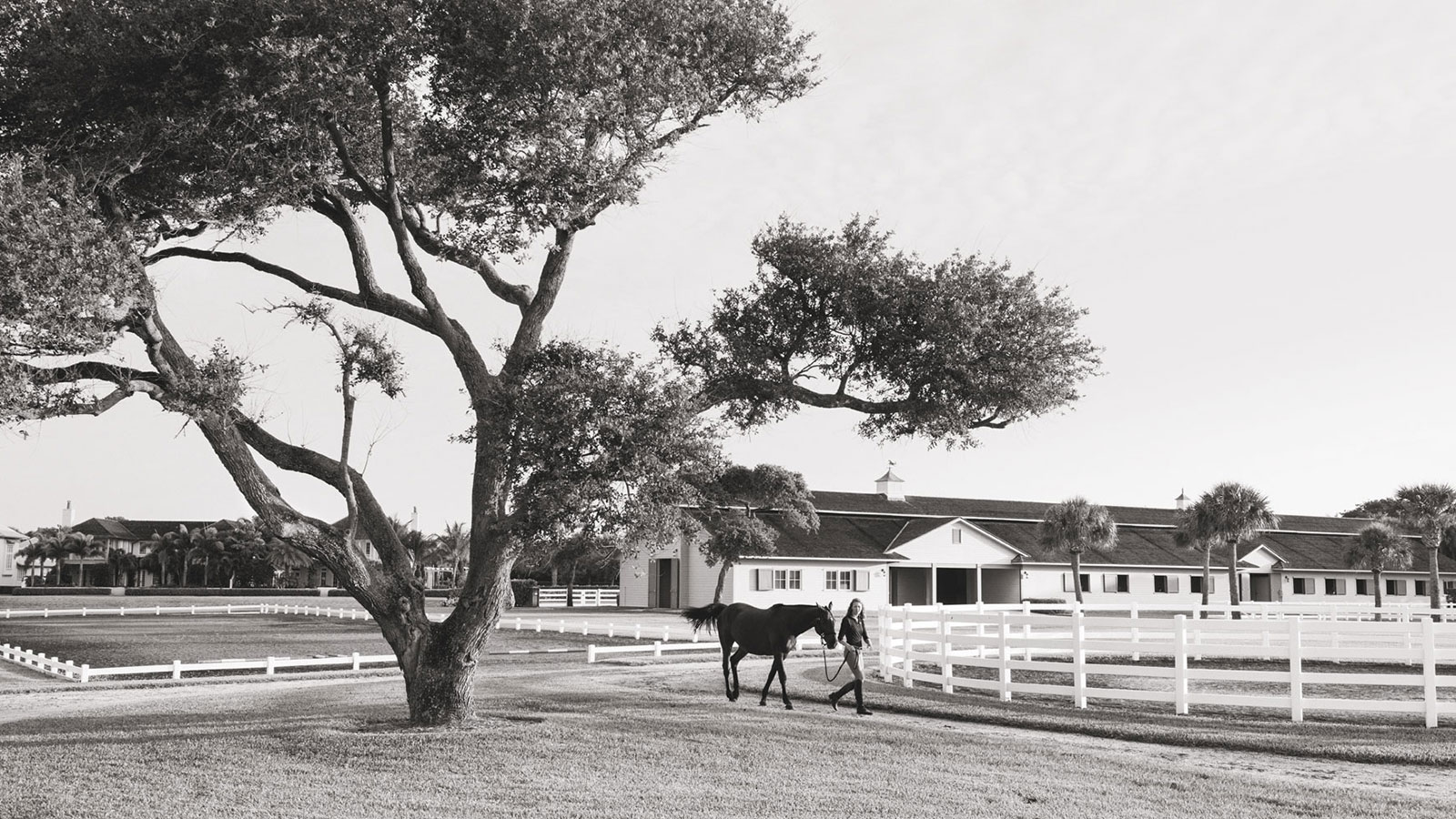 Windsor Florida Equestrian Centre