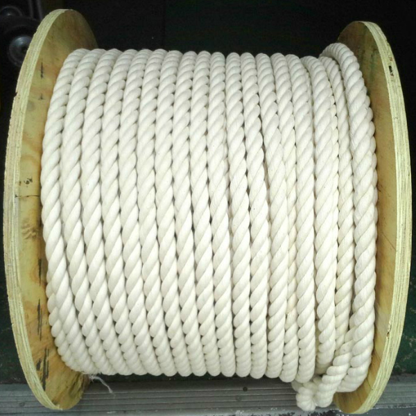 "100% Natural Cotton Twist Rope 1"" Thick Sold by the Foot"