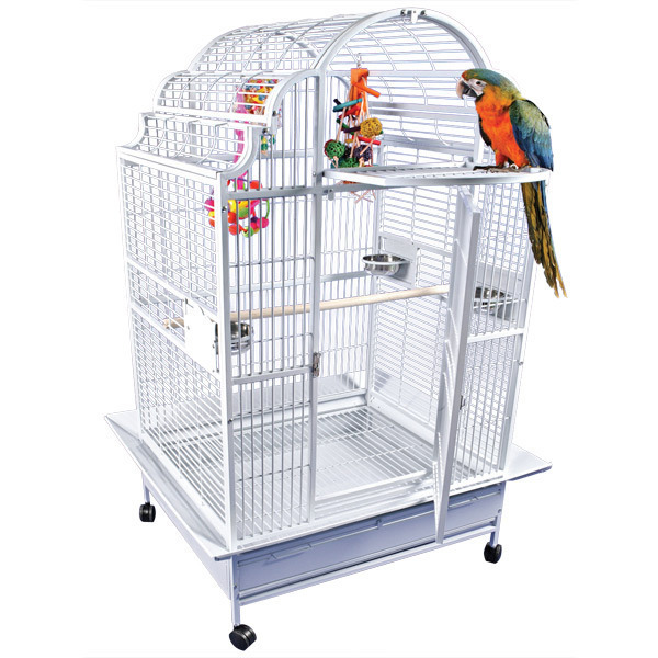 Elegant Top Bird Cage for Large Parrots by AE GC6-4032 Platinum