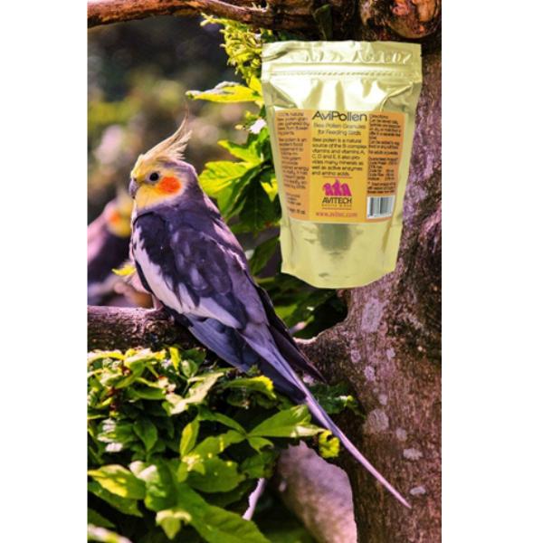 Avitech AviPollen 100% Natural Bee Pollen for Birds 8 oz (.227 kg)