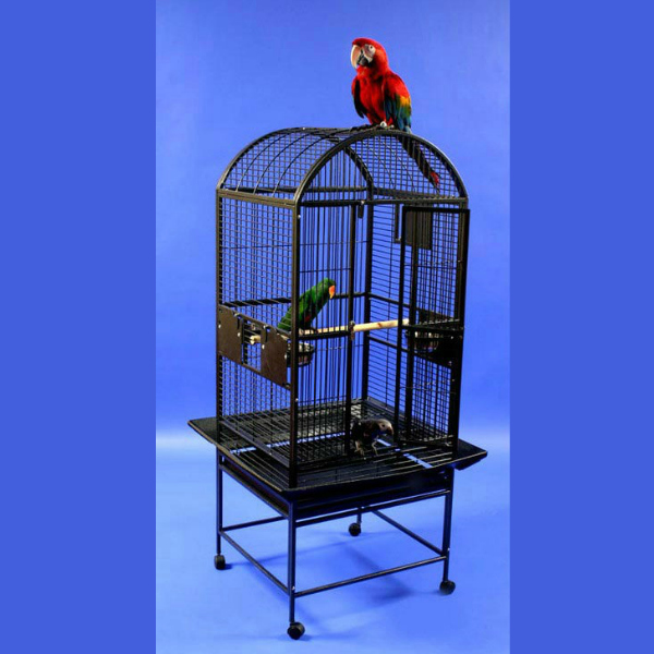 Dome Top Bird Cage for Medium Parrots by AE 9002422 Platinum