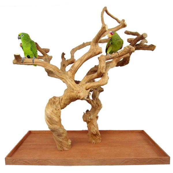 Java Wood Parrot Play Stand Tree Double Base by AE Large 400L