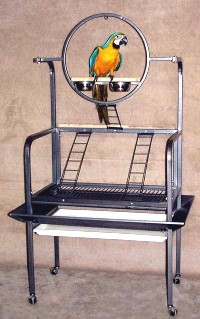 Bird Play Stand for Large Parrots by HQ 503 Platinum