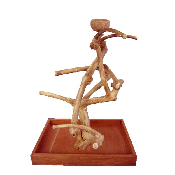 Parrot Table Top Play Stand: Java Wood Parrot Play Stand Tree Table Top By AE Small