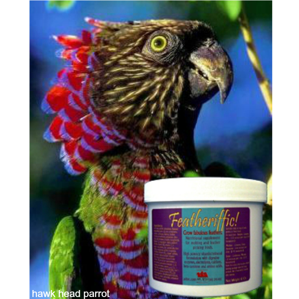 Avitech Featheriffic! Supplement For Fabulous Feathers 16 oz (.454 kg)