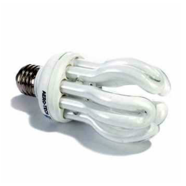Full Spectrum Economy Daylight Bulb 25 Watt 6 Pack