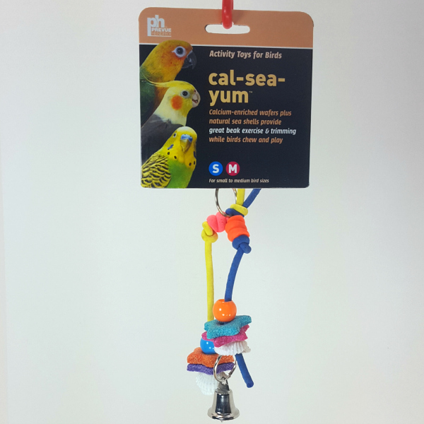 Cal-Sea-Yum Calcium Fun Bird Toy by Prevue - Legs