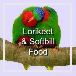 Lory Softbill