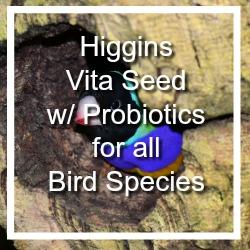 Higgins Vita
