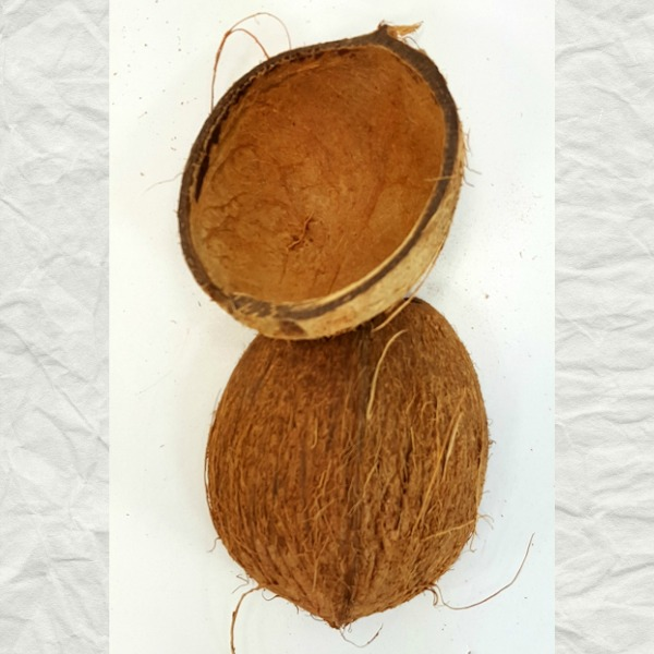 Coconut Shell Halves For Feeders And Small Bird Nests Hairy 2 pc