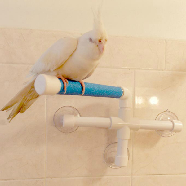 Shower & Window Fold Out Perch by SuperBird Creations Small