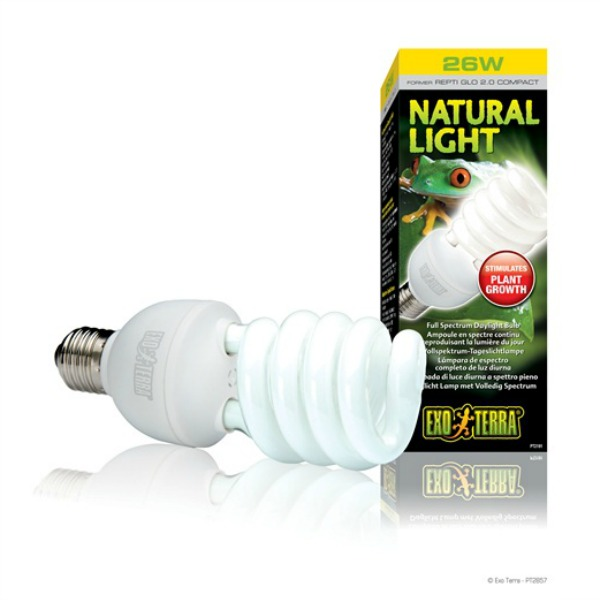 Full Spectrum Natural Light Daylight Bulb by ExoTerra 26 Watt