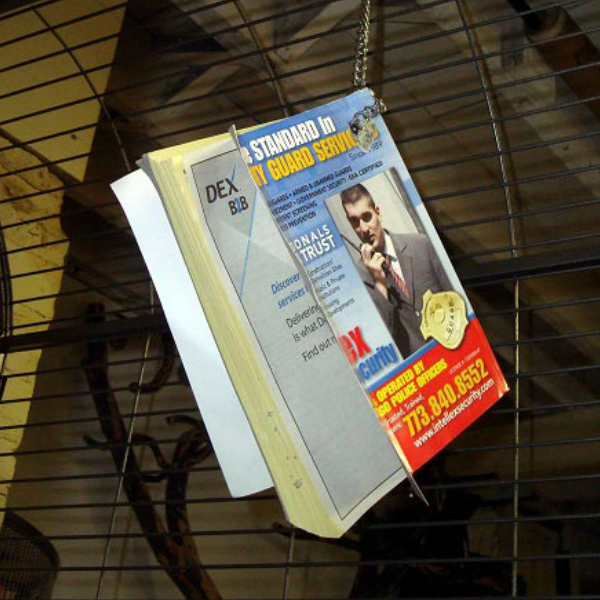 Free Bird Toy - Phone Books
