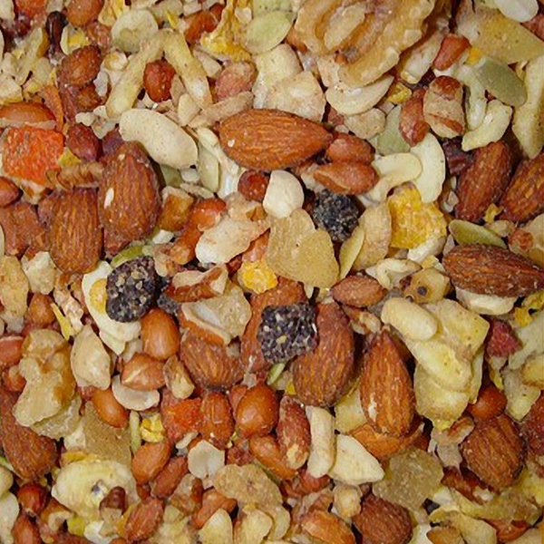 Higgins Sunburst Boca Nuts Shelled Nuts Fruit Parrot Treat 20 lb (9.07 Kg)