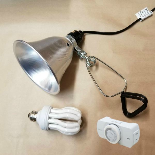 Full Spectrum Economy Daylight Bulb with Clamp Light & Timer