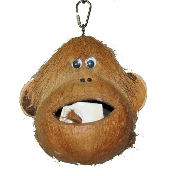 Monkey Head Coconut Foraging Bird Toy by Prevue Pet Naturals