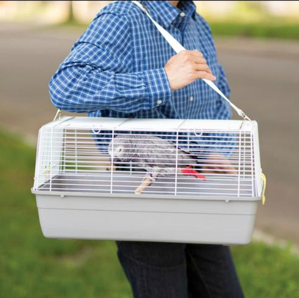 Hospital Cage or Carrier for Small Medium Birds Pets by Prevue 1306