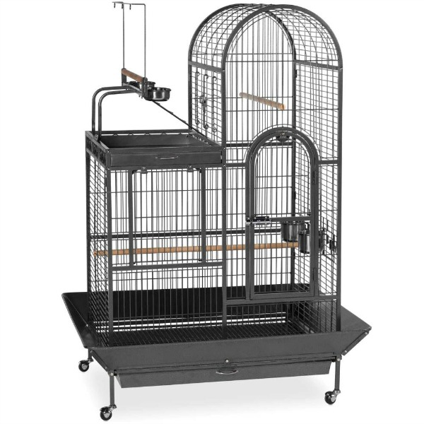 Dual Top Bird Cage for Medium Large Parrots by Prevue 3159 Black