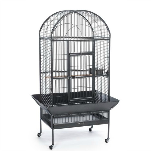Dome Top Bird Cage for Medium Large Parrots by Prevue 34531 Black