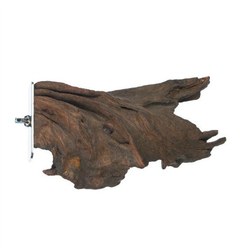 Mangrove Lounge Natural Wood Bolt On Perch by Prevue for Birds Reptiles Small Animals