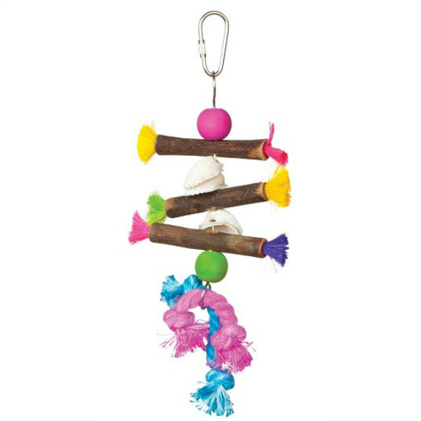 Tropical Teasers Bird Toy by Prevue - Shells & Sticks