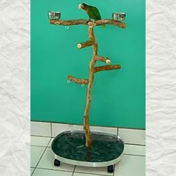 Dragonwood Medium Rolling Floor Bird Play Stand 19x24