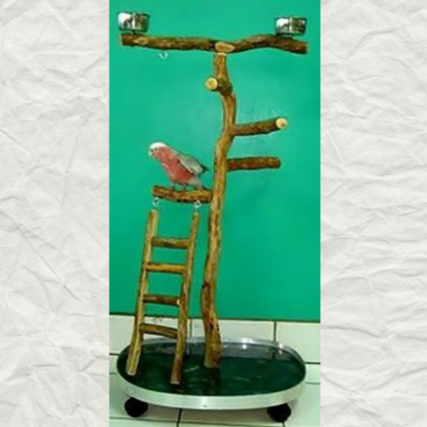 Dragonwood Medium Rolling Bird Stand w Ladder 19x24